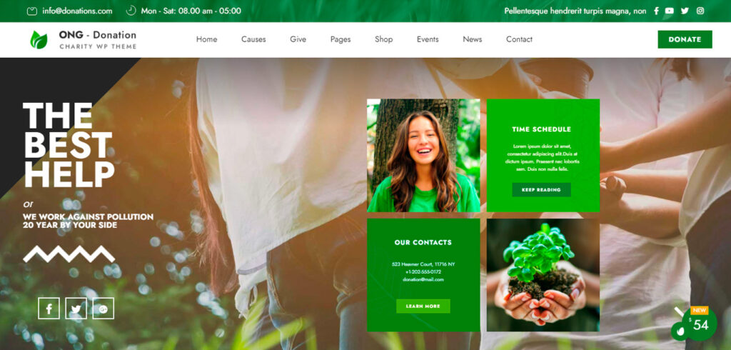 Diseño de Páginas Webs para ONGs 007