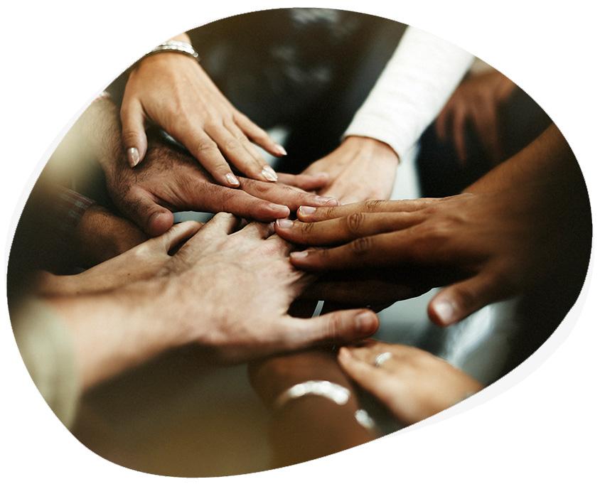 Diseño de Páginas Webs para ONGs