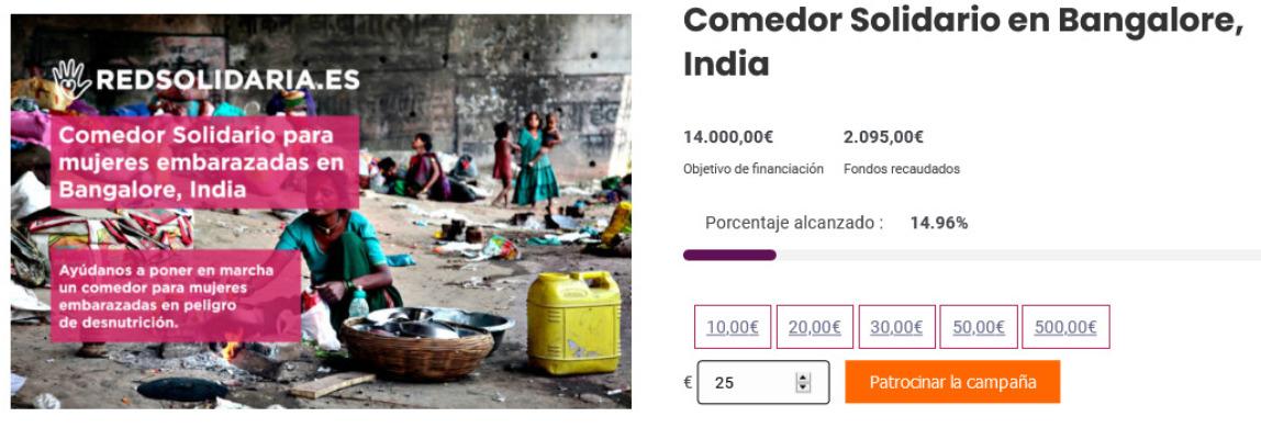 Sistema de Donaciones ONGs WordPress WooCommerce