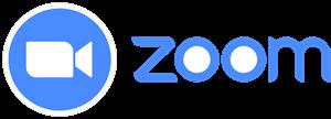 Zoom para Webs de Fisioterapeutas