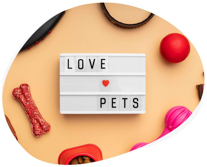 Diseño de tiendas profesionales para vender productos para animales y mascotas